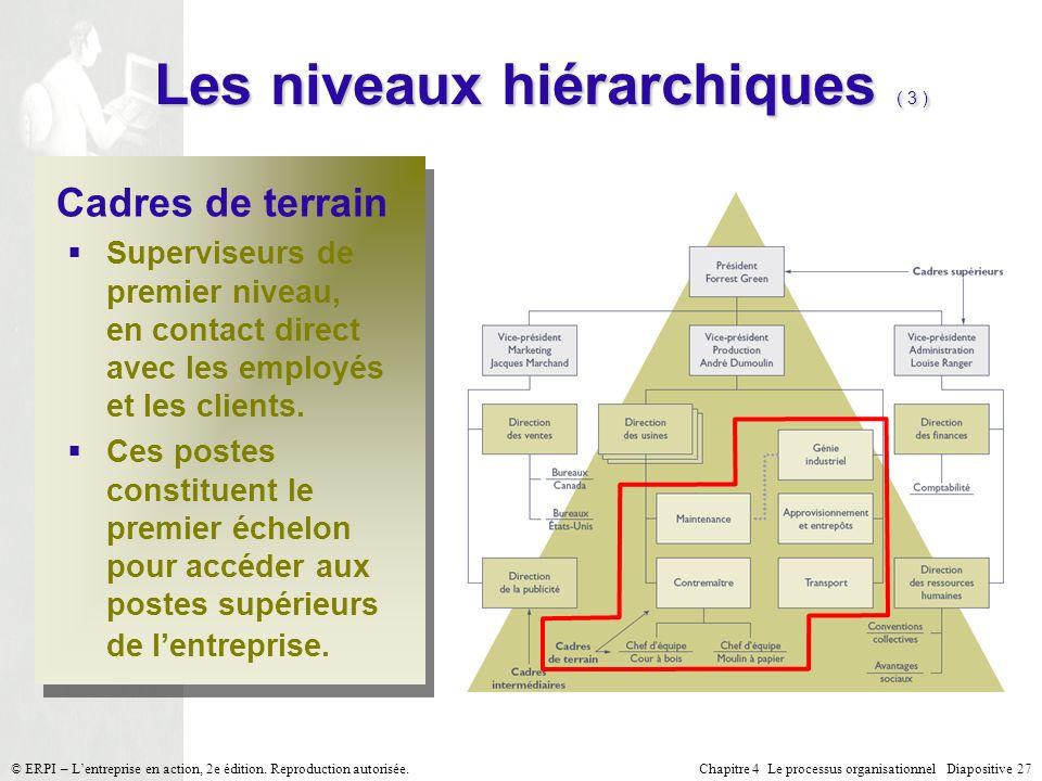 Les niveaux hiérarchiques ( 3 )