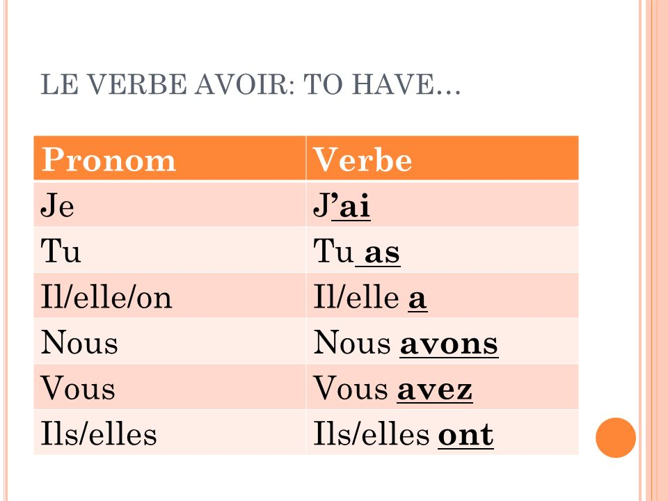 LE VERBE AVOIR: TO HAVE…