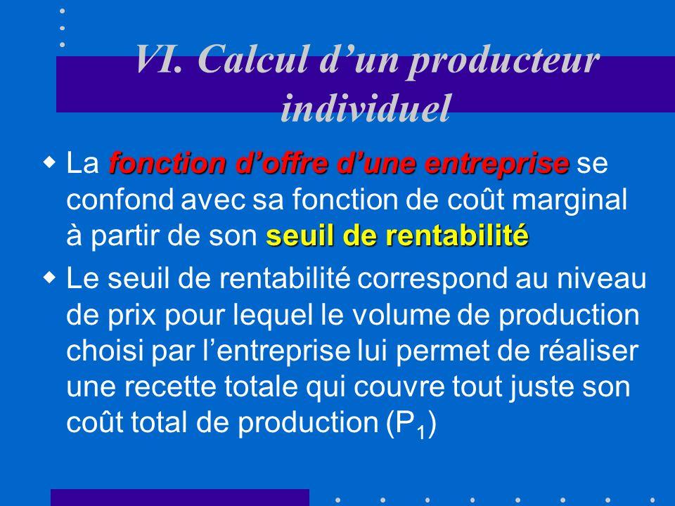 VI. Calcul d'un producteur individuel