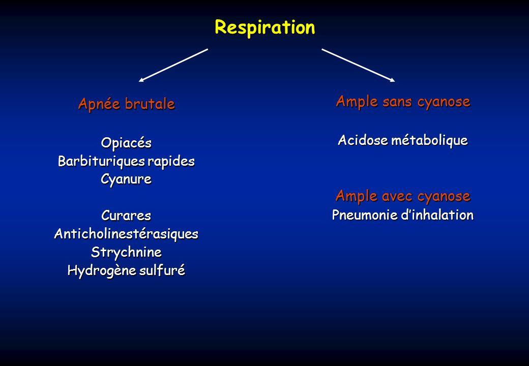 Respiration Ample sans cyanose Apnée brutale Ample avec cyanose