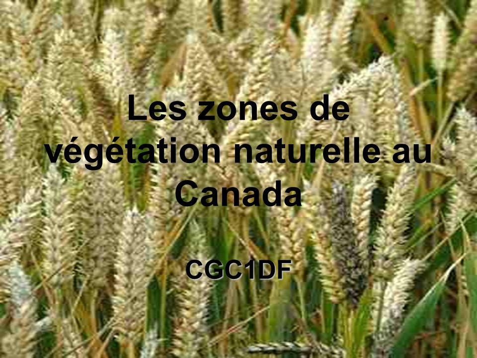 Les zones de végétation naturelle au Canada