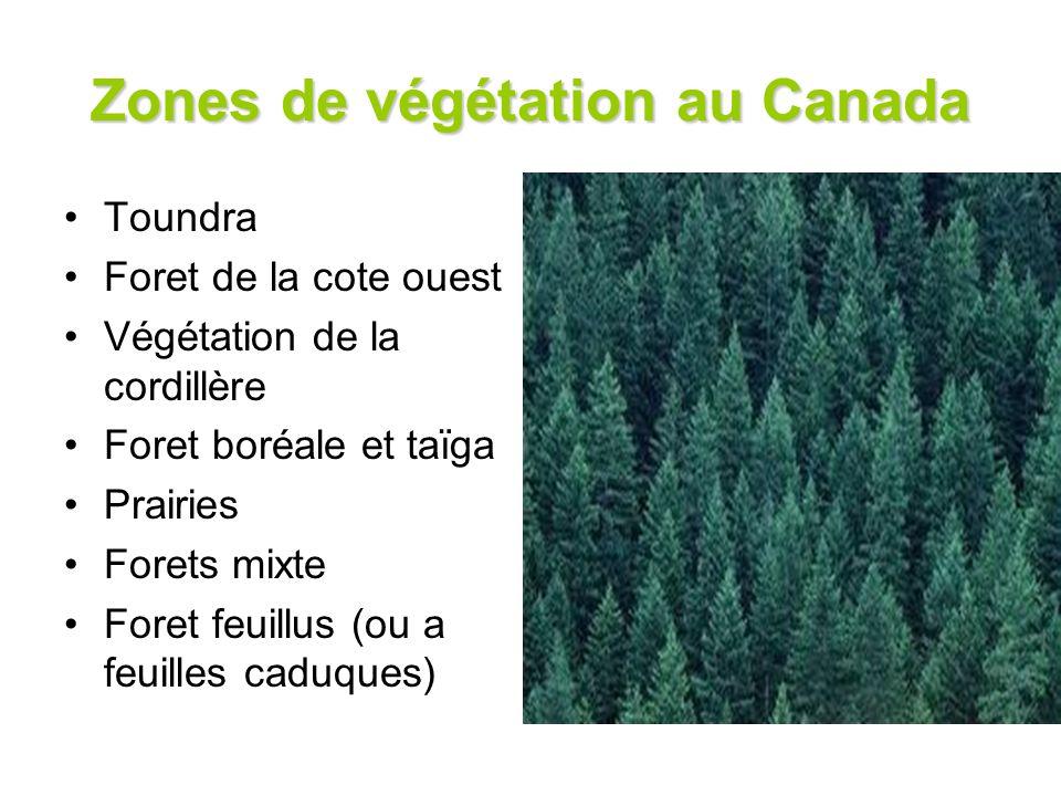 Zones de végétation au Canada