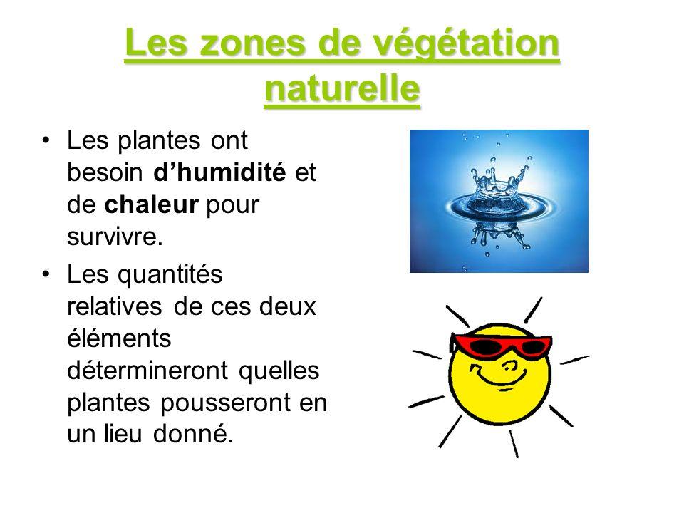 Les zones de végétation naturelle