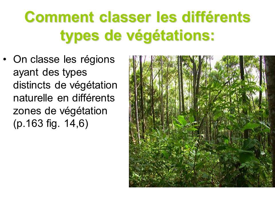 Comment classer les différents types de végétations: