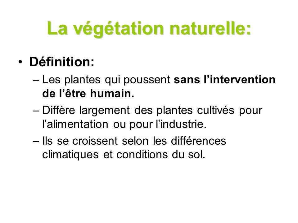 La végétation naturelle: