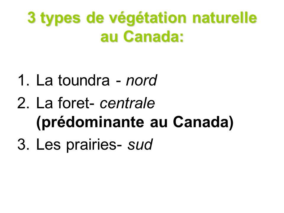 3 types de végétation naturelle au Canada: