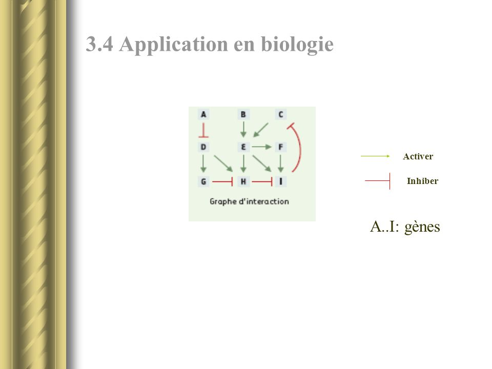 3.4 Application en biologie