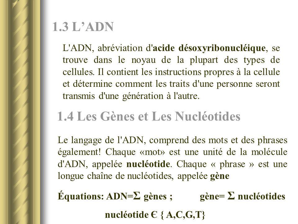 1.4 Les Gènes et Les Nucléotides