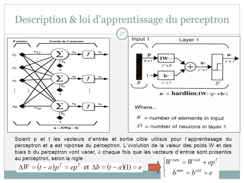 Description & loi d'apprentissage du perceptron