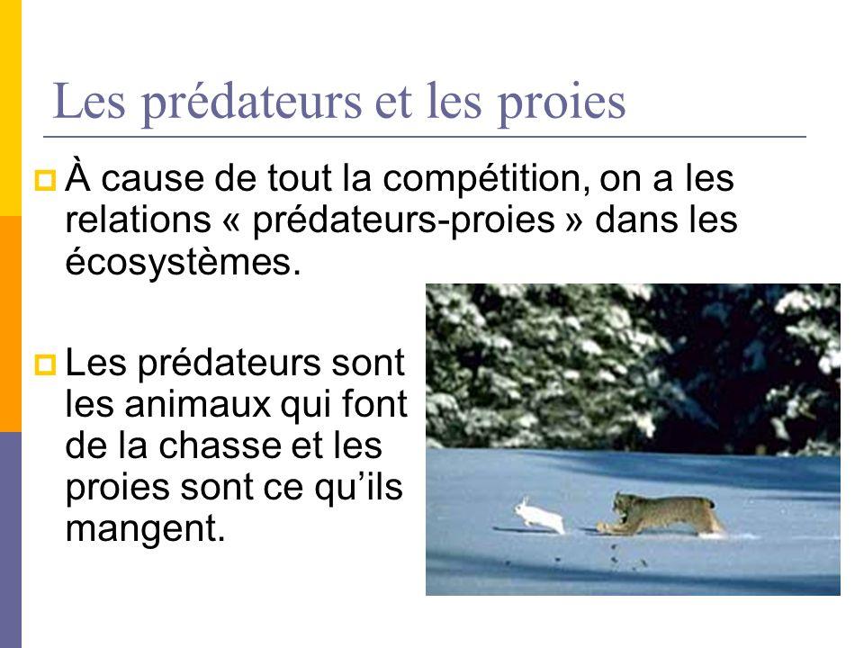 Les prédateurs et les proies