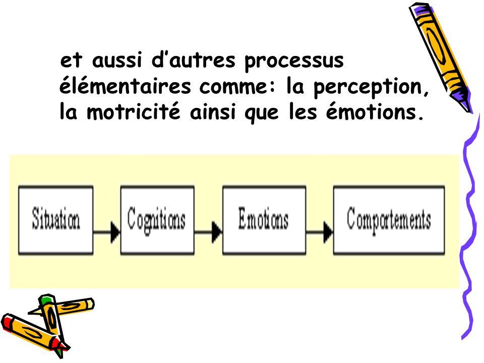 et aussi d'autres processus élémentaires comme: la perception, la motricité ainsi que les émotions.