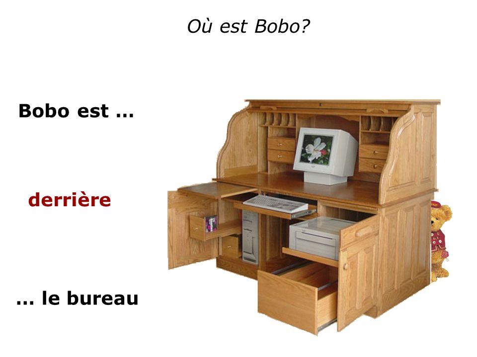 Où est Bobo Bobo est … derrière … le bureau