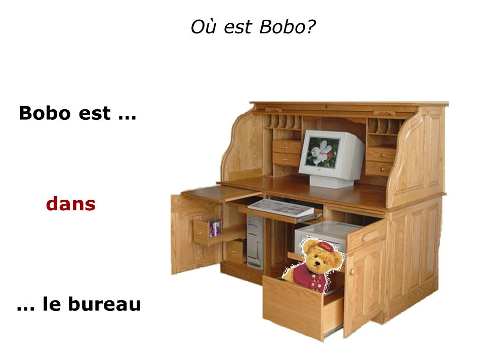 Où est Bobo Bobo est … dans … le bureau