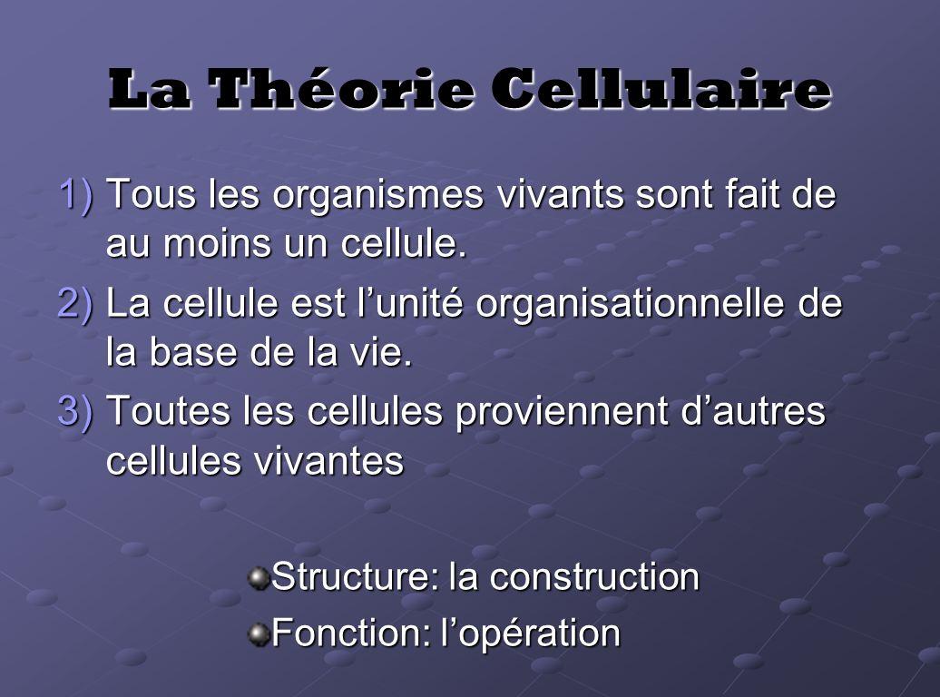 La Théorie Cellulaire Tous les organismes vivants sont fait de au moins un cellule. La cellule est l'unité organisationnelle de la base de la vie.