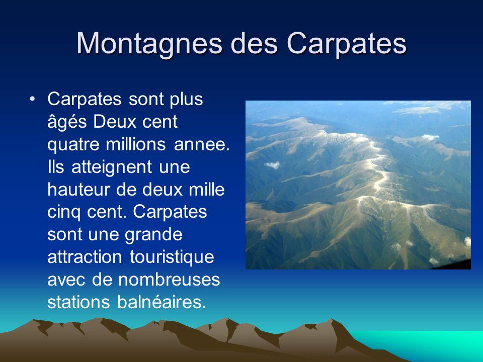 Montagnes des Carpates