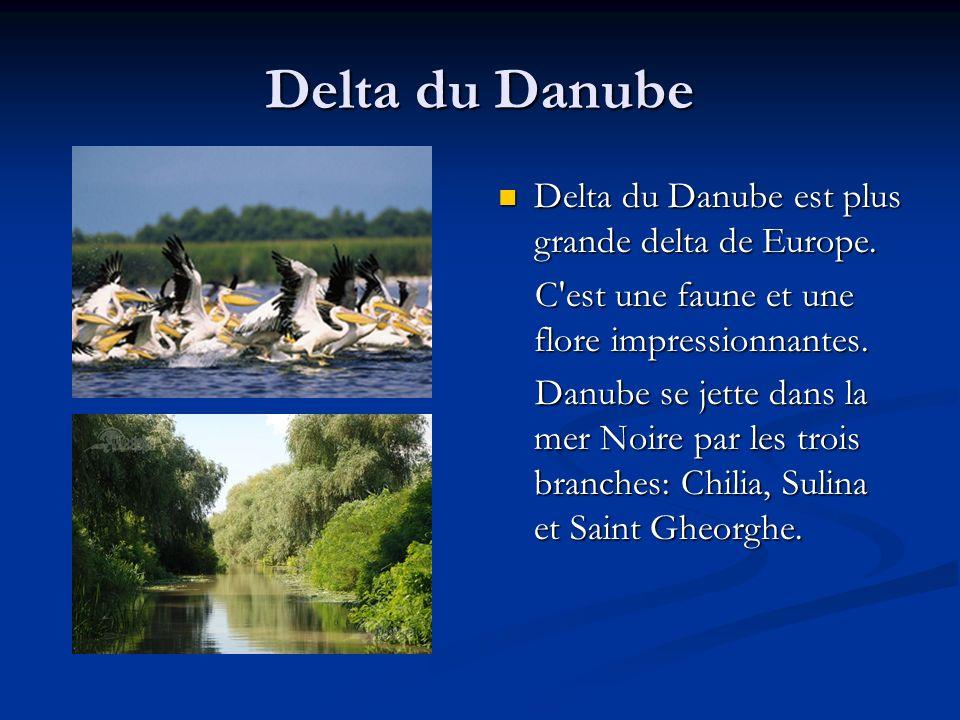 Delta du Danube Delta du Danube est plus grande delta de Europe.