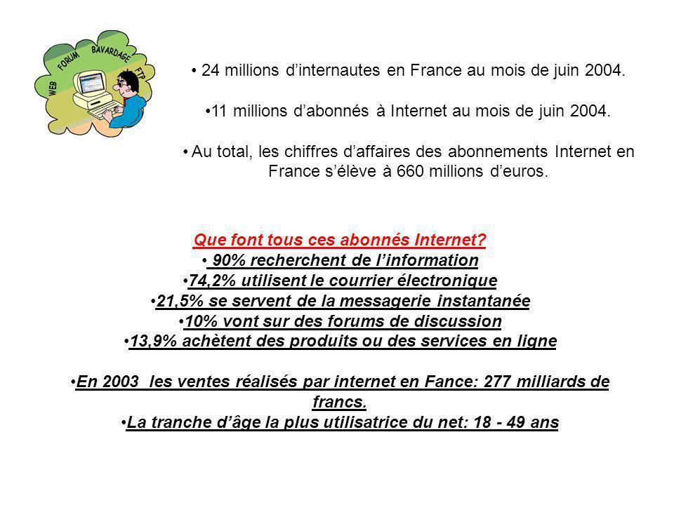 24 millions d'internautes en France au mois de juin 2004.
