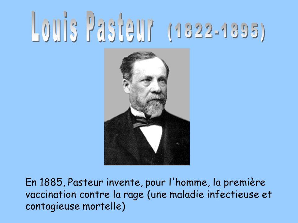Louis Pasteur(1822-1895)