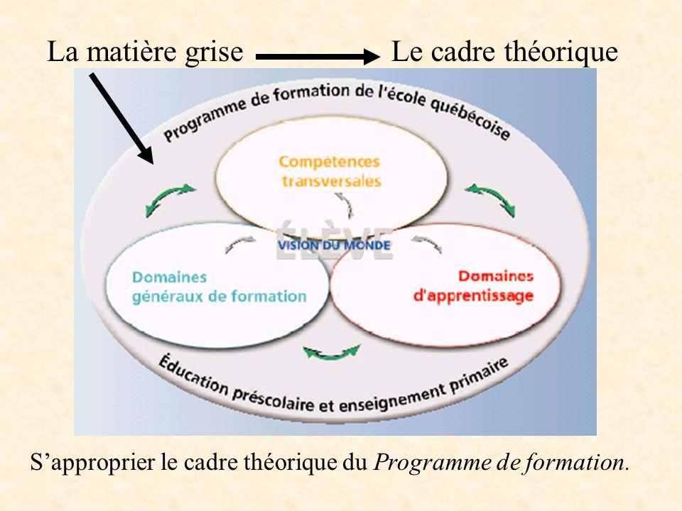 La matière grise Le cadre théorique