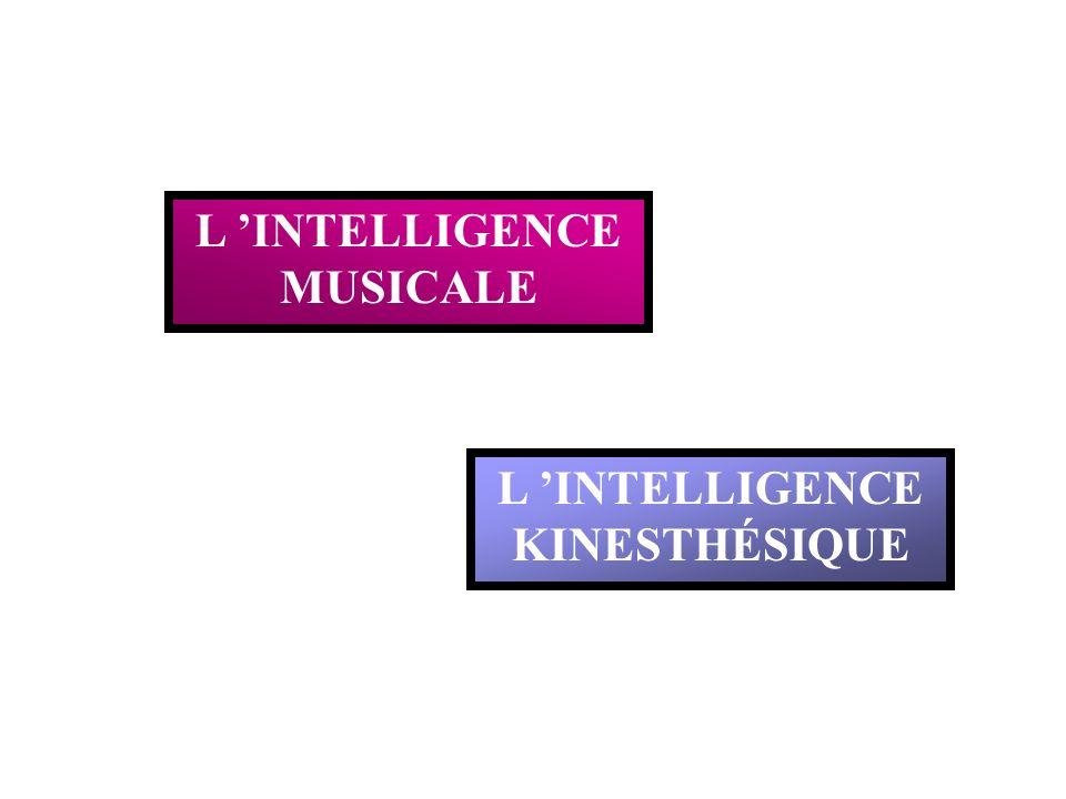 L 'INTELLIGENCE MUSICALE L 'INTELLIGENCE KINESTHÉSIQUE