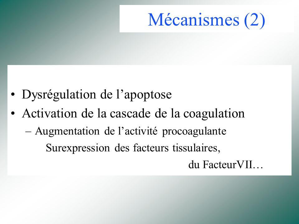 Mécanismes (2) Dysrégulation de l'apoptose