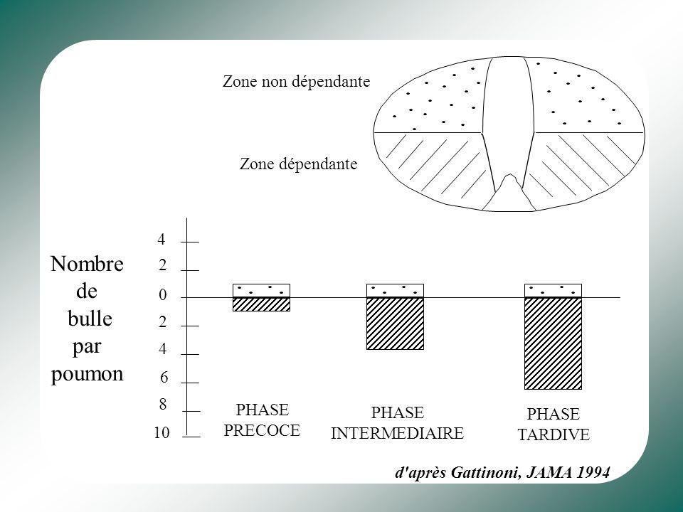 Nombre de bulle par poumon Zone non dépendante Zone dépendante 4 2 2 4