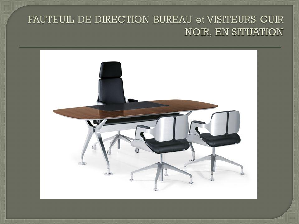 FAUTEUIL DE DIRECTION BUREAU et VISITEURS CUIR NOIR, EN SITUATION