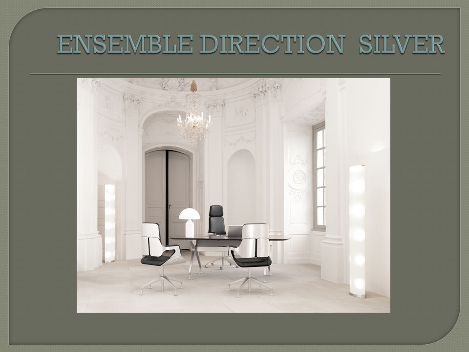 ENSEMBLE DIRECTION SILVER