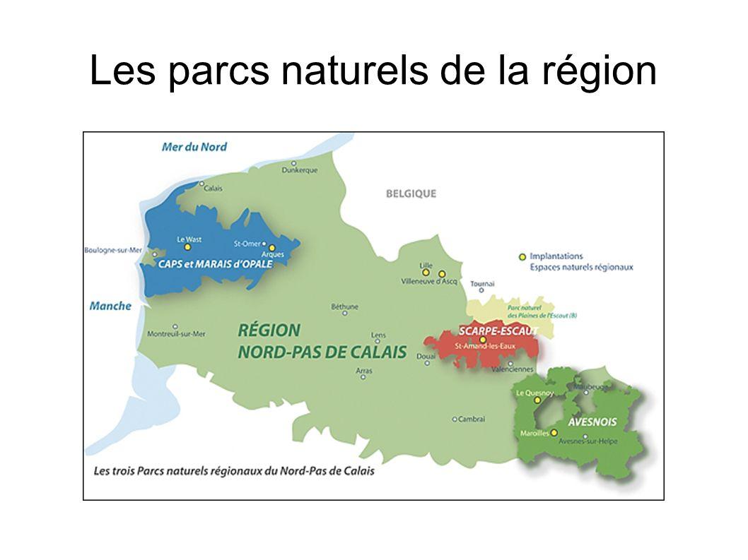 Les parcs naturels de la région