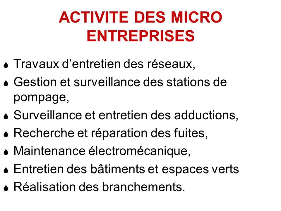 ACTIVITE DES MICRO ENTREPRISES