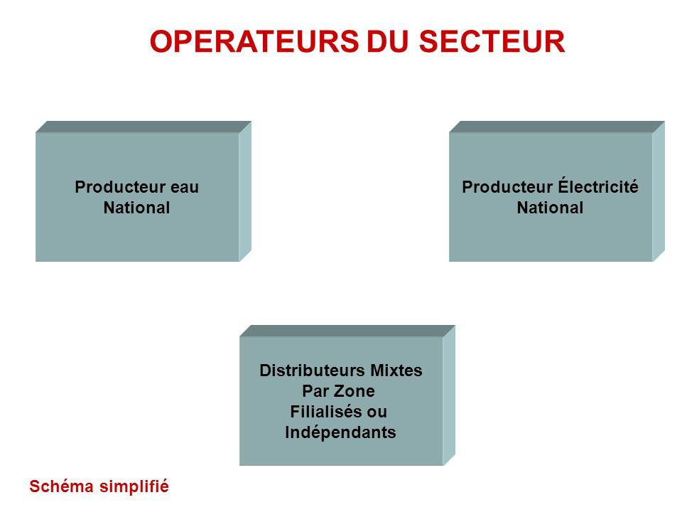 Producteur Électricité