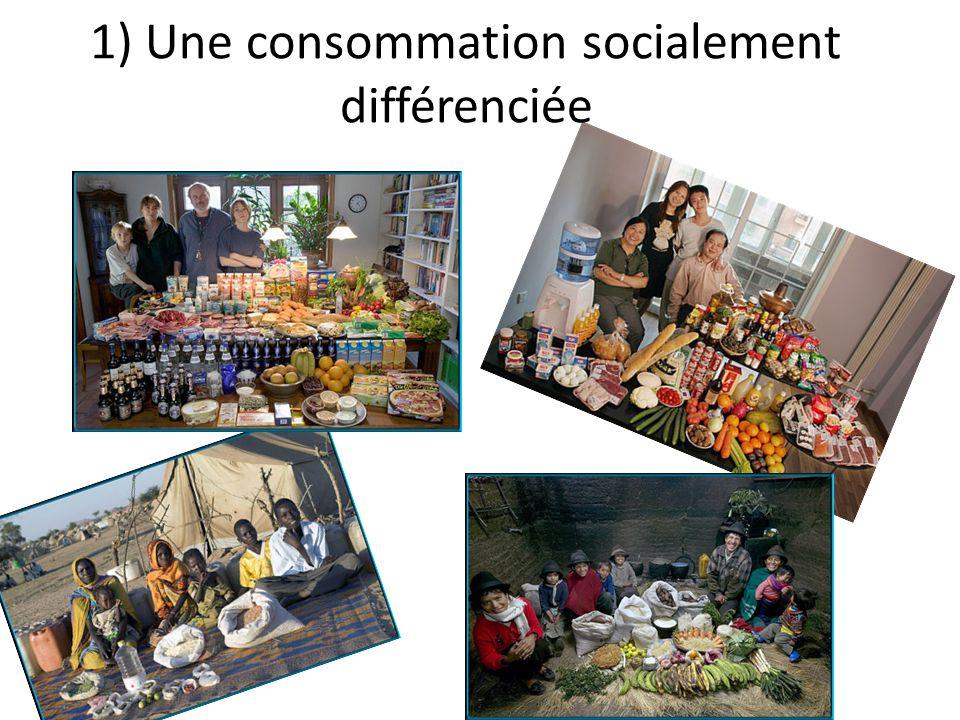 1) Une consommation socialement différenciée