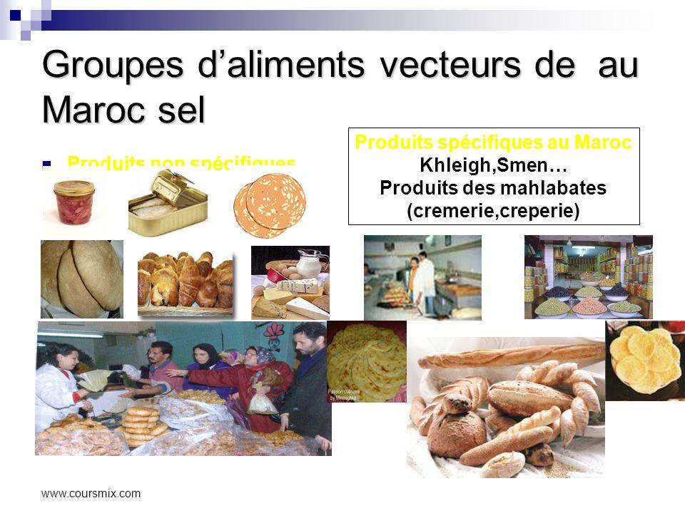 Groupes d'aliments vecteurs de au Maroc sel