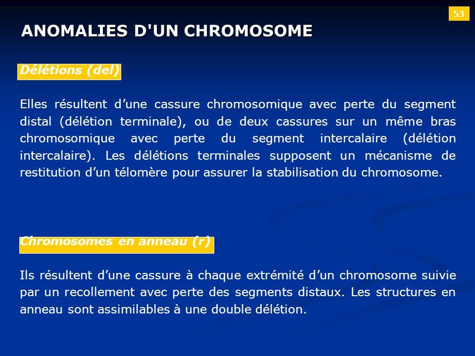 ANOMALIES D UN CHROMOSOME
