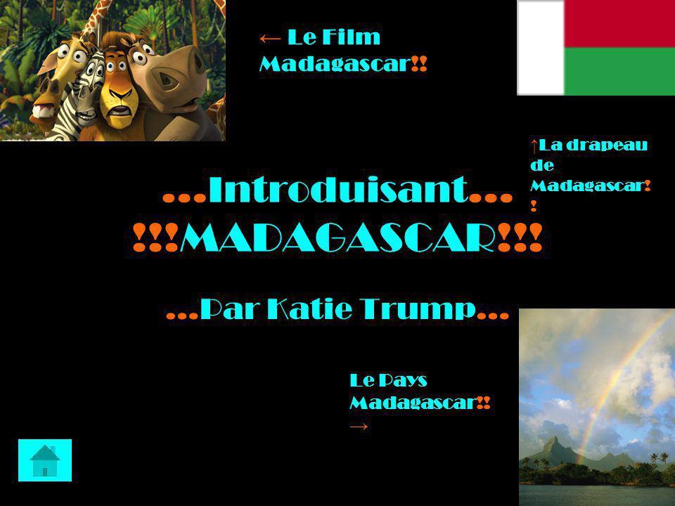 …Introduisant… !!!MADAGASCAR!!!