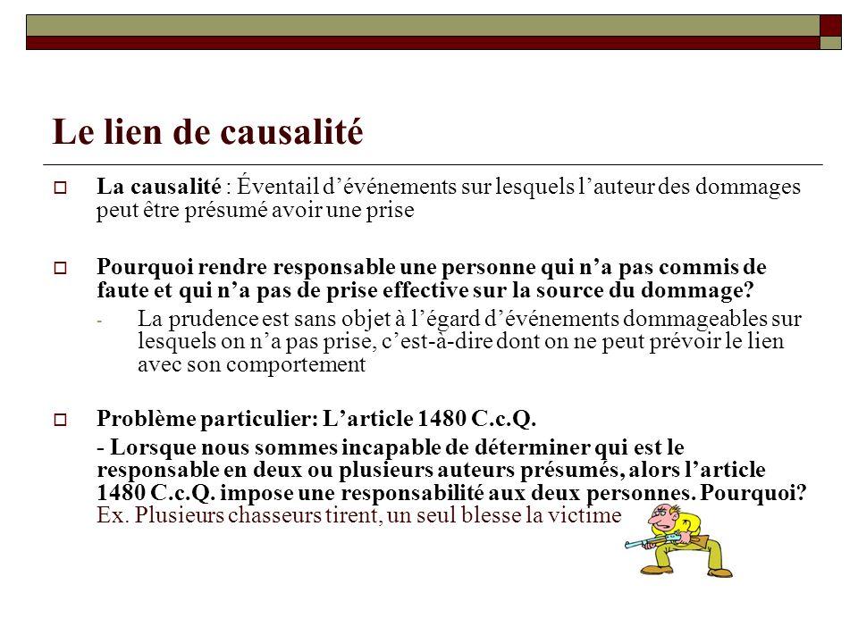 Le lien de causalité La causalité : Éventail d'événements sur lesquels l'auteur des dommages peut être présumé avoir une prise.