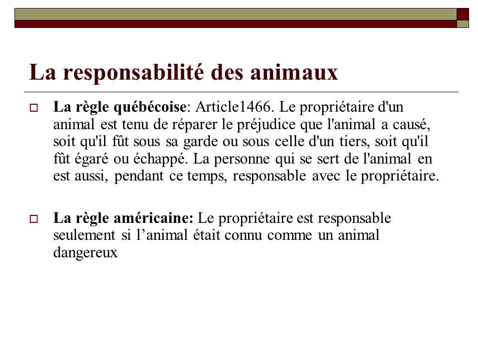 La responsabilité des animaux