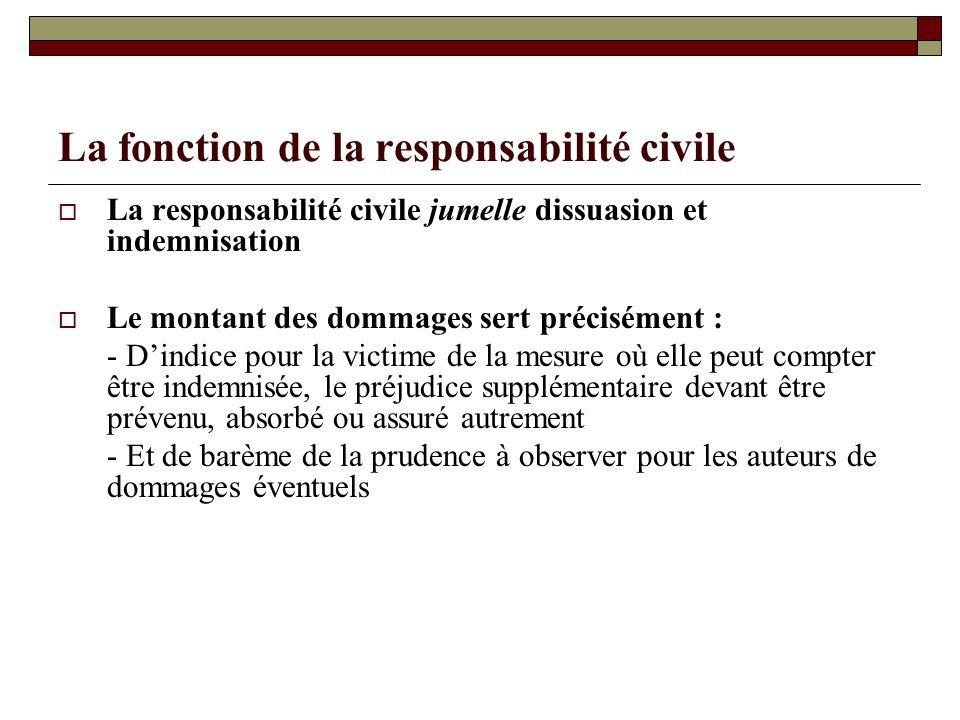 La fonction de la responsabilité civile
