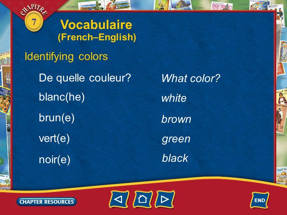 Vocabulaire Identifying colors De quelle couleur What color