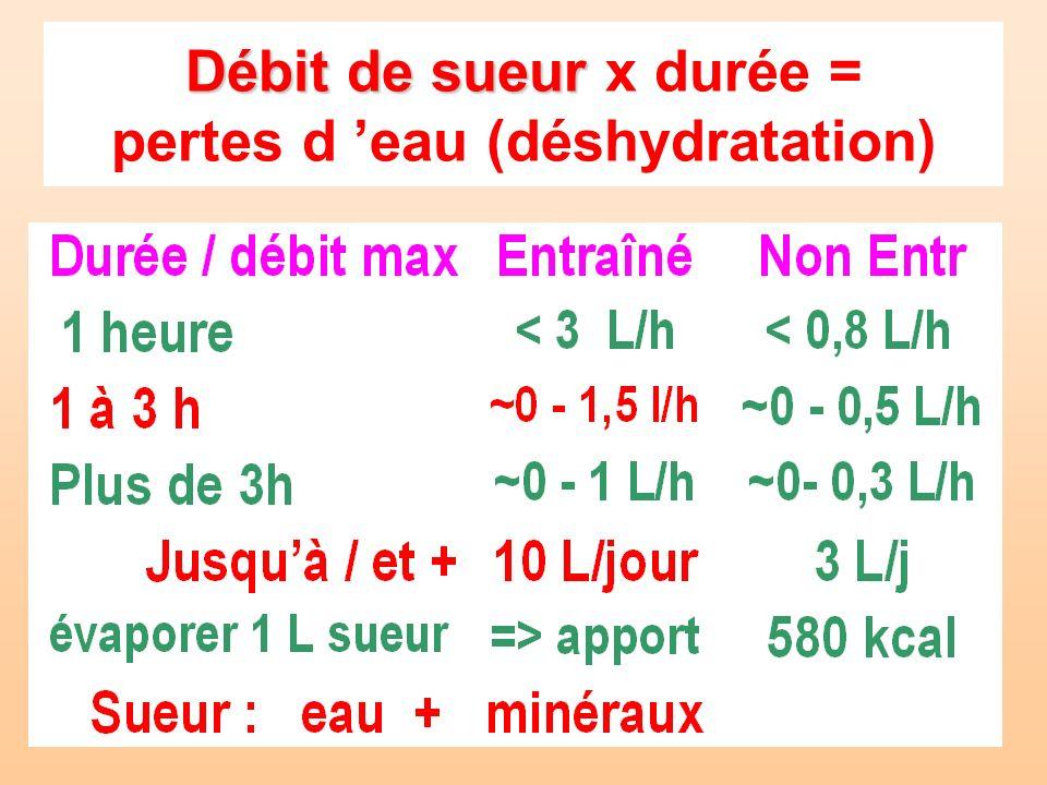 Débit de sueur x durée = pertes d 'eau (déshydratation)
