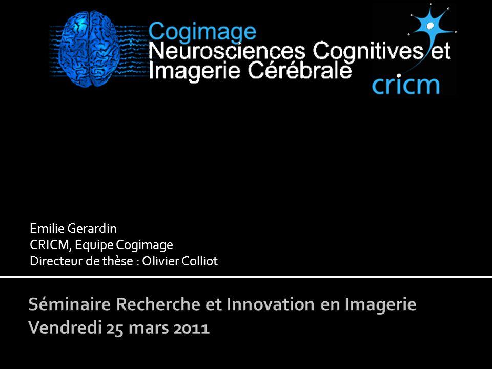 Séminaire Recherche et Innovation en Imagerie Vendredi 25 mars 2011