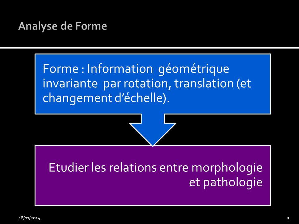 Analyse de Forme Forme : Information géométrique invariante par rotation, translation (et changement d'échelle).