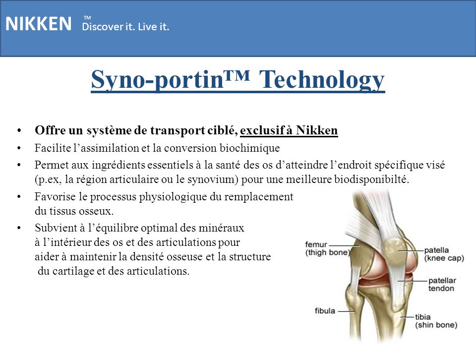 Syno-portin™ Technology