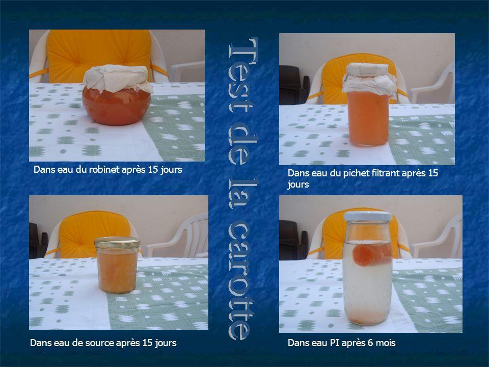 Test de la carotte Dans eau du robinet après 15 jours