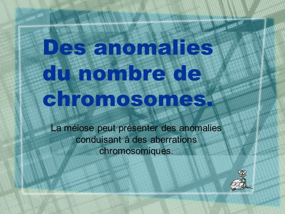 Des anomalies du nombre de chromosomes.