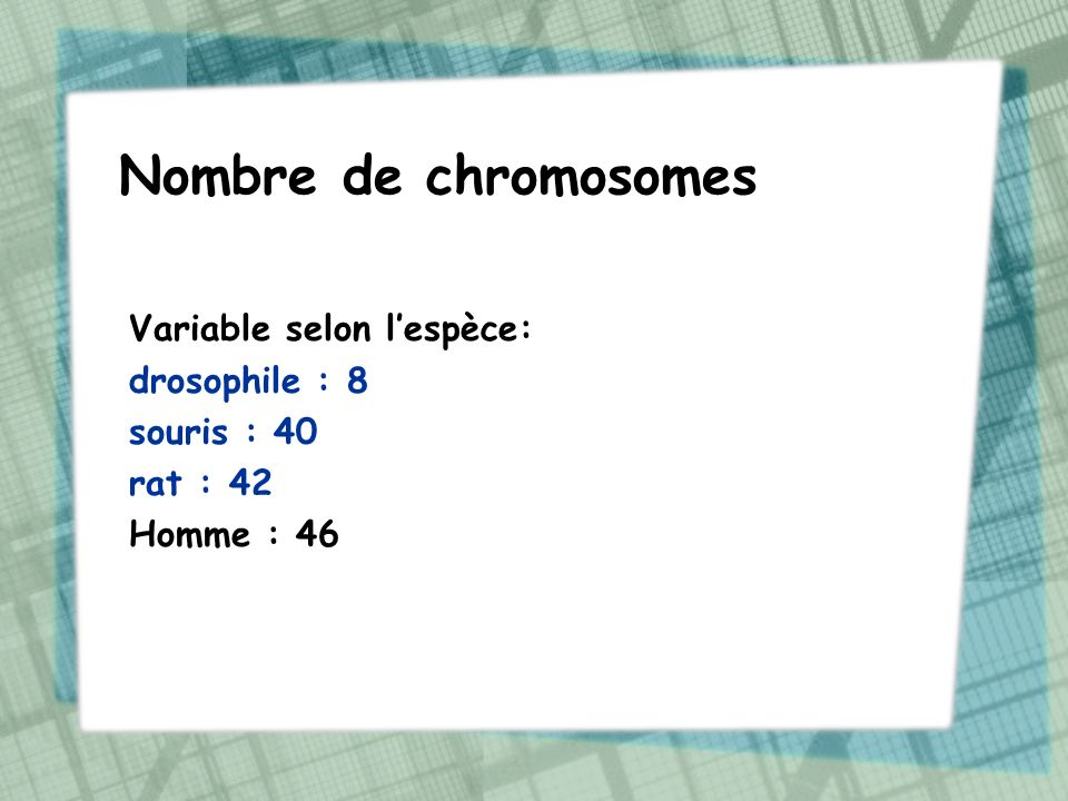 Nombre de chromosomes Variable selon l'espèce: drosophile : 8