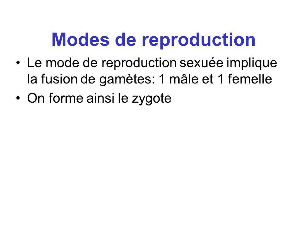 Modes de reproductionLe mode de reproduction sexuée implique la fusion de gamètes: 1 mâle et 1 femelle.