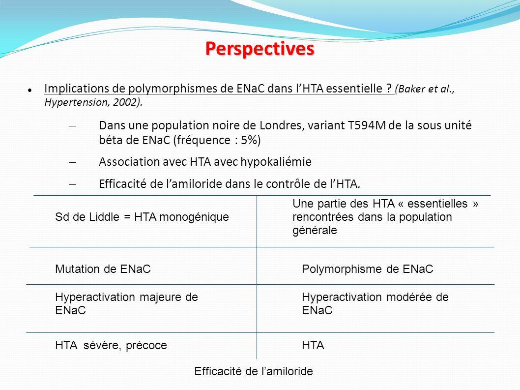 Perspectives Implications de polymorphismes de ENaC dans l'HTA essentielle (Baker et al., Hypertension, 2002).