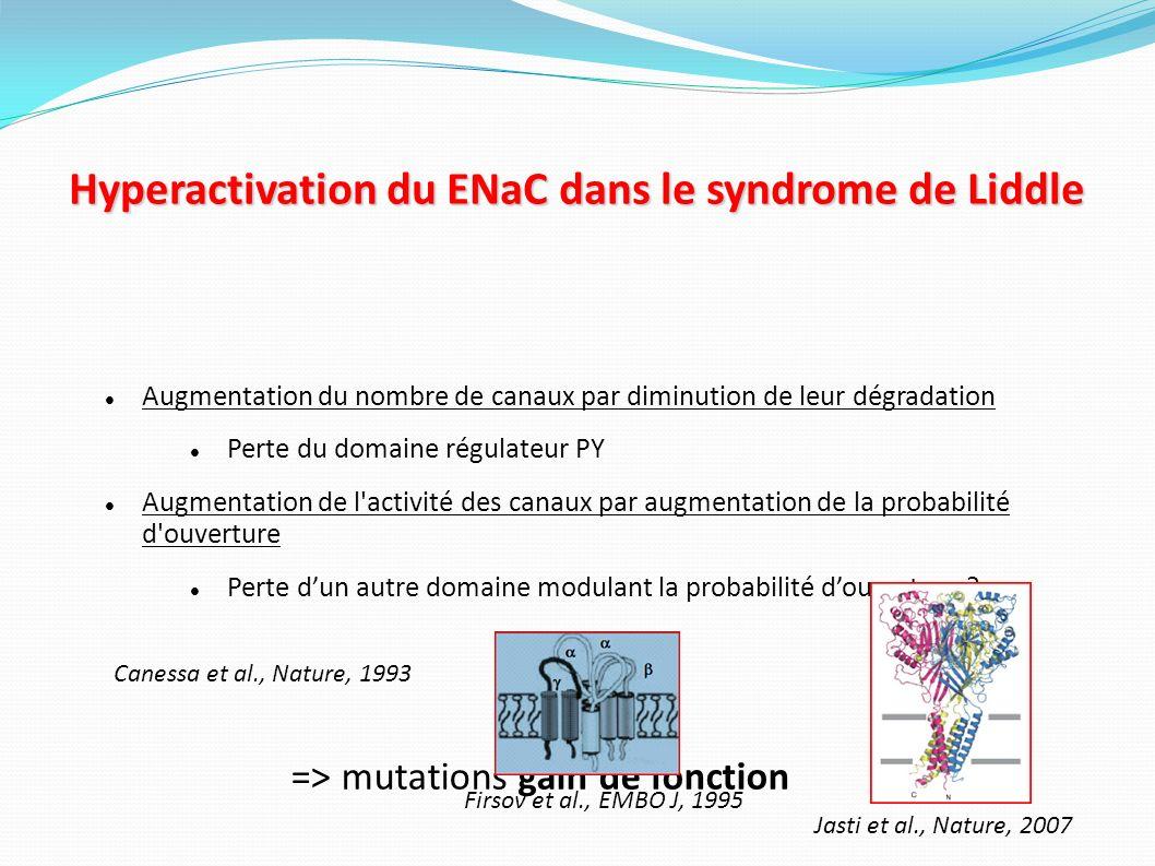Hyperactivation du ENaC dans le syndrome de Liddle