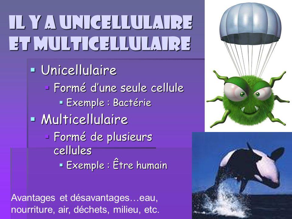Il y a unicellulaire et multicellulaire